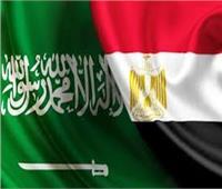 السعودية : أمن مصر جزء لا يتجزأ من أمننا والأمة العربية