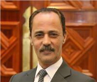 محمد قناوي يكتب: عفوا الأستاذ بشير الديك .. نريد أحمد زكي إنساناً وليس ملاكاً