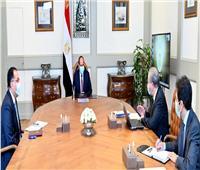 الرئيس السيسي يتابع موقف مخزون السلع التموينية الاستراتيجي مع «المصيلحي»