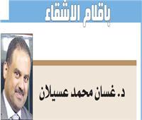 أمن مصر..أمن العرب