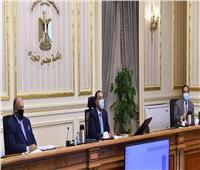 الحكومة: دمج وإصلاح هياكل عدد من الجهات والهيئات والمؤسسات التابعة للوزارات