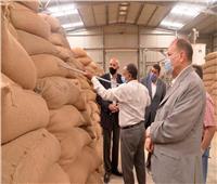 توريد ٦٦٢ ألف طن من القمح لشون وصوامع الشرقية