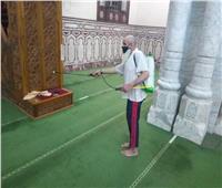 صور وفيديو| استعدادًا لفتح المساجد.. انطلاق حملة التعقيم ووضع علامات التباعد ببورسعيد