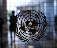 الأمم المتحدة: مصر لعبت دور هام في الترويج لمبادئ وقيم المنظمة منذ إنشائها