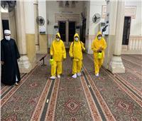 صور  تعقيم وتطهير مسجد صلاح الدين بالمنيل استعدادا لصلاة الفجر