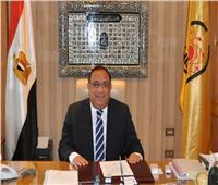 رئيس جامعة حلوان يهنئ الرئيس السيسي بمناسبة ذكرى ثورة ٣٠ يونيو