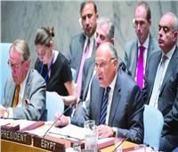 شكري «أمام مجلس الأمن»: ندعم حق دول حوض النيل في التنمية.. والملء الأحادي يعرض الملايين للخطر