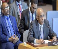 ممثلالسودان لـ«مجلس الأمن»: ندرك حق الدول في التنمية دون الإضرار بالآخرين