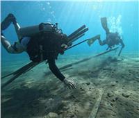 الحياة البحرية تستجيب لحملاتتنظيف قاع البحر الأحمر بظهور القرش الحوتي