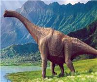 دراسة حديثة تحل لغز انقراض الديناصورات