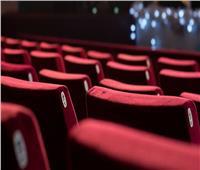فيلم يحقق «Zero» إيرادات في شباك التذاكر أمس.. تعرف عليه