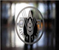 فاو: أسعار الغذاء العالمية تسجل أول ارتفاع لها في 2020 خلال يونيو
