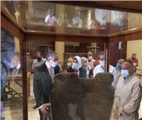 المتحف الكبير يستقبل 7 قطع أثرية جديدة لعرضها خلال حفل الافتتاح