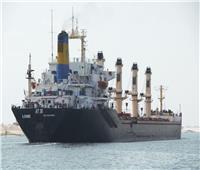 قناة السويس تسجل عبور 19311 سفينة بحمولات 1.21 مليار طن