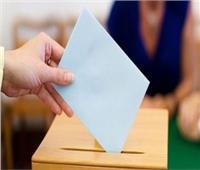 إجراء انتخابات مجلس الشيوخ ١١ و ١٢ أغسطس المقبل