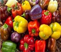 فلفل الألوان فوائد سحرية.. غني بفيتامين c