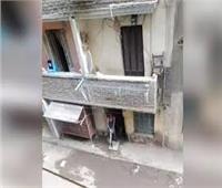 القبض على صاحب فيديو «من النهادرة مفيش حكومة» بالمطرية