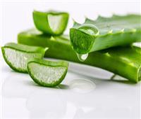 """8 فوائد طبيعية يقدمها """"جل صبار الألوفيرا"""" لبشرتك"""