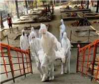 الهند «ثامن» دولة في العالم تتخطى حاجز الـ«20 ألف وفاة» بفيروس كورونا