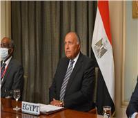 نص كلمة وزير الخارجية سامح شكري أمام جلسة مجلس الأمن حول ليبيا