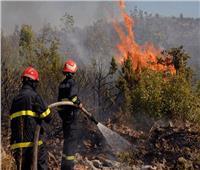 الحرائق تتلف 1888 هكتارا خلال أسبوع في الجزائر