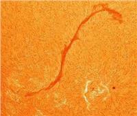 «اخدود ناري في الغلاف الجوي».. انفجار شعيرة مغناطيسية على الشمس