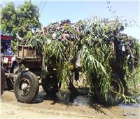رفع 74 طن مخلفات ونواتج تطهير الترع فى حملة نظافة بالأقصر