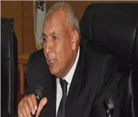 محافظ الوادي الجديد: استكمال مشروع الممشى السياحي بمدينة الخارجة