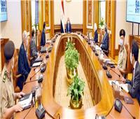 الرئيس السيسي يستعرض الإطار العام للمشروع القومي للاكتفاء الذاتي من مشتقات البلازما