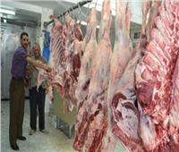 محافظة الغربية : توفير احتياجات المواطنين من اللحوم استعدادًا لعيد الأضحى المبارك