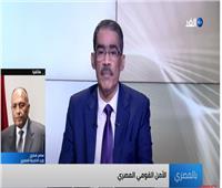فيديو| شكري:مصر ستمضي في مساري التفاوض ومجلس الأمن بشأن أزمة سد النهضة