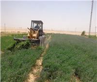 محافظ الوادي الجديد: نجحنا في استرداد 280 فدان من الأراضي المتعدى عليها