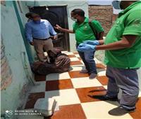 صور| التضامن: إنقاذ سيدة سبعينية تعاني من الإهمال الصحي