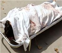 """عاطل يقتل عمته بـ""""شومة"""" في نجع حمادي بسبب خلافات عائلية"""