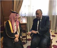 مصر والسعودية تؤكدان أهمية التوصل لتسوية شاملة للأزمة الليبية للحفاظ على وحدتها