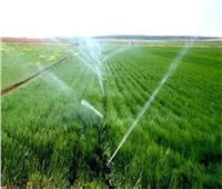 حقيقة امتناع الحكومة عن توفير حصص مياه الري اللازمة للزراعات خلال الموسم الحالي