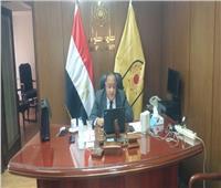 رئيس جامعة حلوان يفتتح السيمنار العلمي «آثار كورونا على السياحة والاقتصاد»