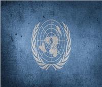 أوتشا: 9.6 ملايين سوداني يعانون من انعدام الأمن الغذائي