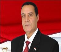 """الشهاوي: """"حسم 2020"""" رسالة تحذير لمن تسول له نفسه المساس بأمن مصر"""