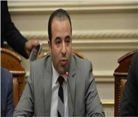 أول اجتماع مع الحكومة بالفيديو كونفرانس داخل البرلمان 
