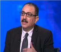 أستاذ علوم سياسية: مصر تدافع عن الأمن القومي للمنطقة العربية