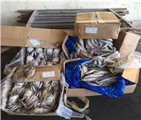 """""""الزراعة"""": ضبط7 أطنان لحوم ودواجن وأسماك فاسدة بـ 3 محافظات"""
