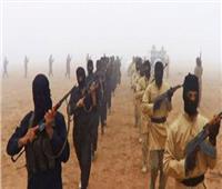 إرهابيون يعدمون أربعة من موظفي الإغاثة بشمال شرق نيجيريا
