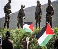 """""""الاتحاد"""" الإماراتية: الأردن والإمارات تدعمان الموقف العربي الرافض لقرار الضم الإسرائيلي"""