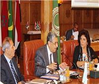دورة استثنائية للمجلس الوزاري العربي للكهرباء الاثنين المقبل