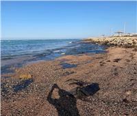 لجنة بيئية لتحديد مصدر التلوث البترولى برأس غارب