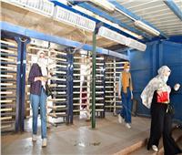 صور.. طلاب الفرق النهائية بجامعة القاهرة يواصلون امتحاناتهم للأسبوع الثالث