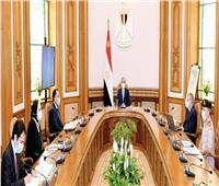 الرئيس السيسي يوجه بتوطين صناعة السيارات في مصر ومواصلة خطة النهوض بصناعة الغزل والنسيج