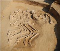 الإمارات.. العثور على 5 هياكل عظمية تعود إلى الألف السادس قبل الميلاد