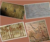 صور| باحث أثري: المصريين القدماء عرفوا الأضحية والفتة